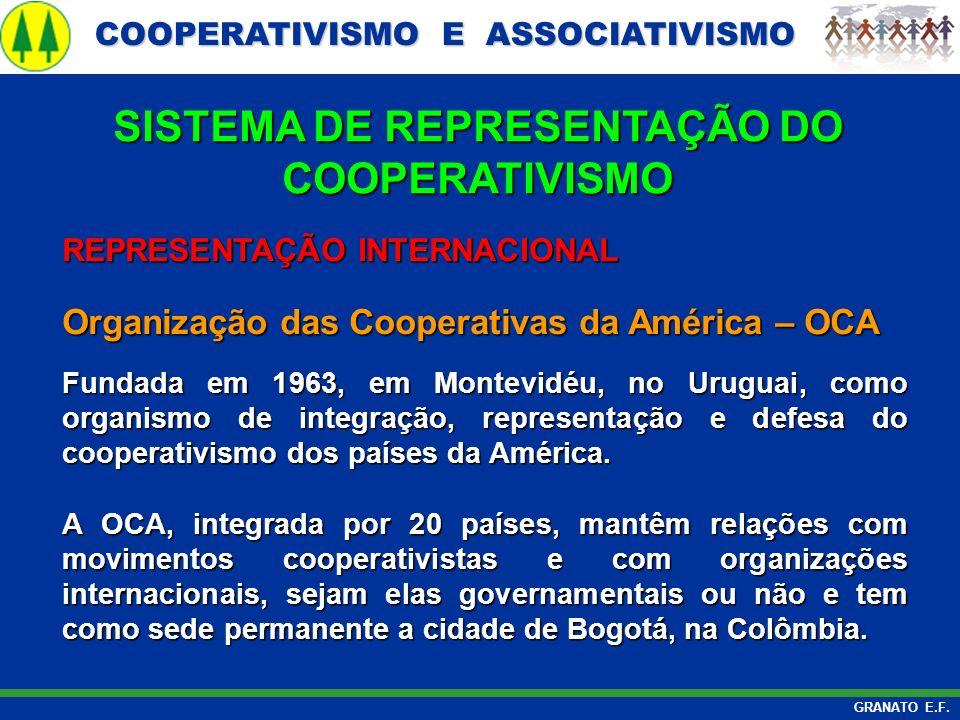 COOPERATIVISMO E ASSOCIATIVISMO COOPERATIVISMO E ASSOCIATIVISMO GRANATO E.F. REPRESENTAÇÃO INTERNACIONAL Organização das Cooperativas da América – OCA