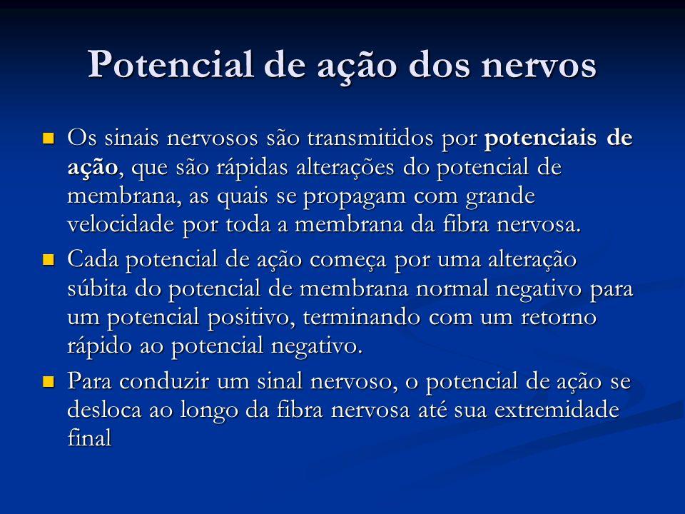 Potencial de ação dos nervos Os sinais nervosos são transmitidos por potenciais de ação, que são rápidas alterações do potencial de membrana, as quais