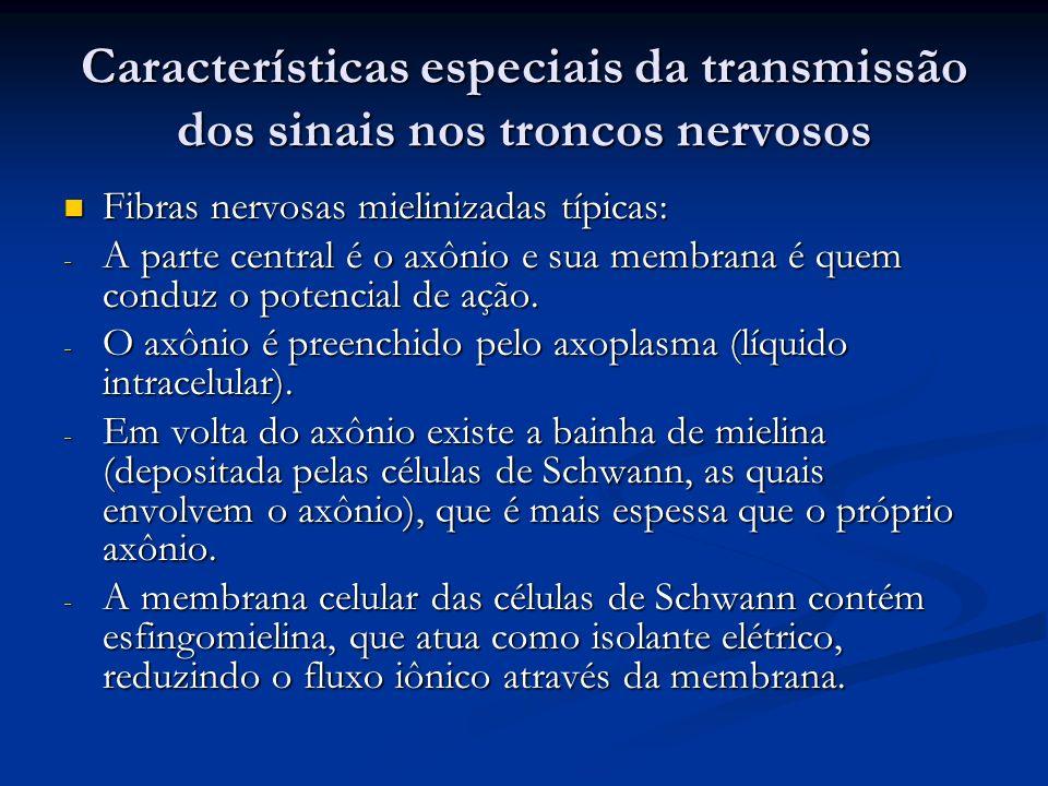 Características especiais da transmissão dos sinais nos troncos nervosos Fibras nervosas mielinizadas típicas: Fibras nervosas mielinizadas típicas: -