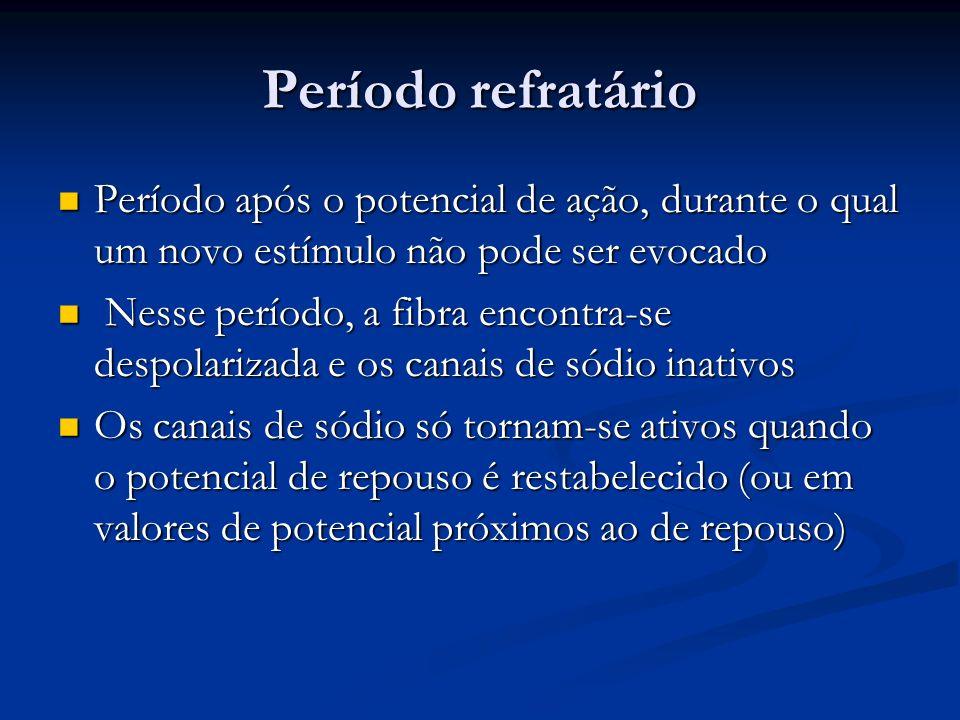 Período refratário Período após o potencial de ação, durante o qual um novo estímulo não pode ser evocado Período após o potencial de ação, durante o