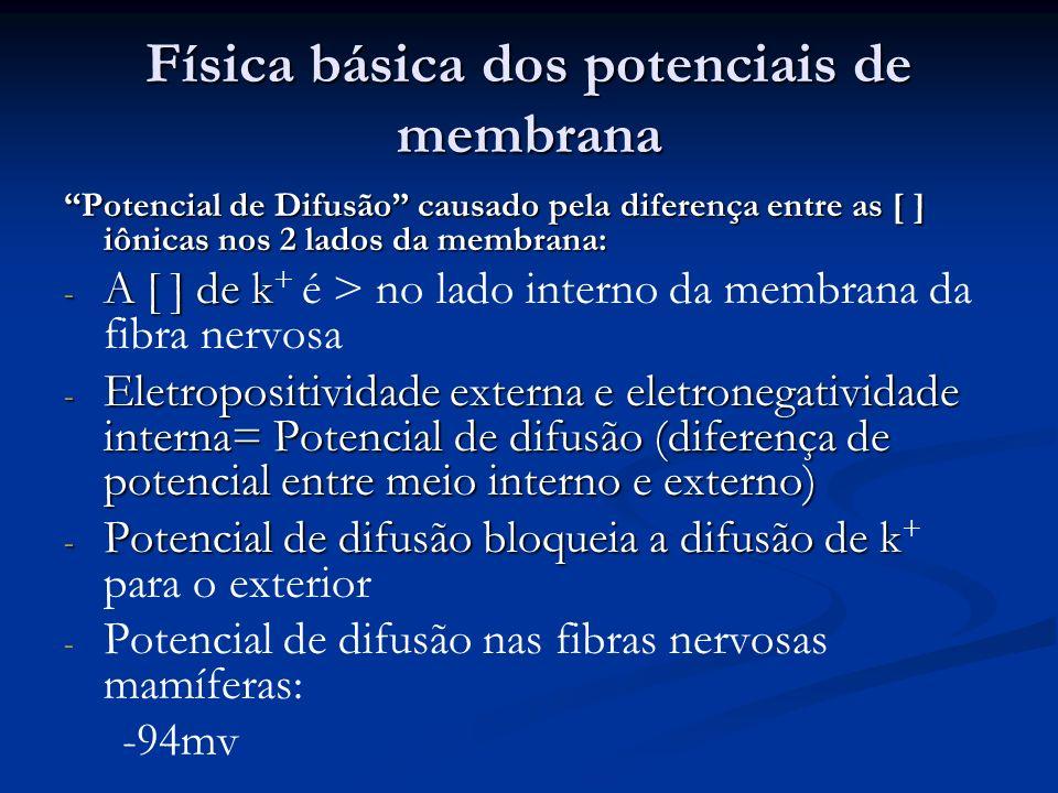 Física básica dos potenciais de membrana Potencial de Difusão causado pela diferença entre as [ ] iônicas nos 2 lados da membrana: - A [ ] de k - A [