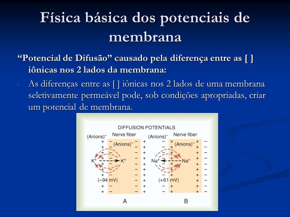 Física básica dos potenciais de membrana Potencial de Difusão causado pela diferença entre as [ ] iônicas nos 2 lados da membrana: - As diferenças ent