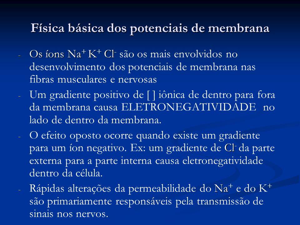 Física básica dos potenciais de membrana - Os íons NaKCl - Os íons Na + K + Cl - são os mais envolvidos no desenvolvimento dos potenciais de membrana
