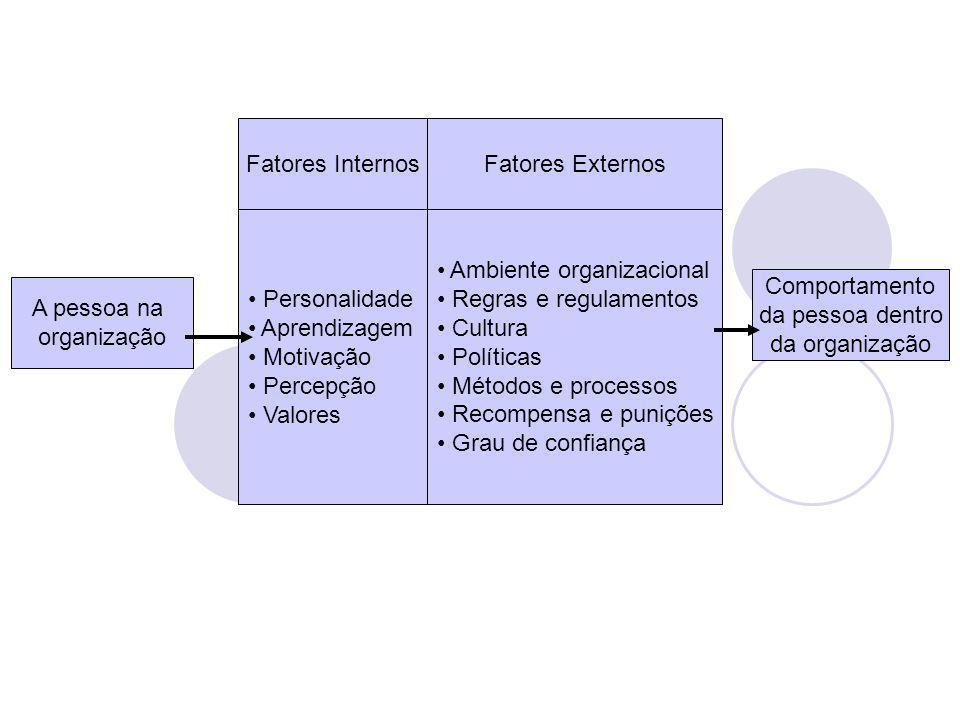 Personalidade Aprendizagem Motivação Percepção Valores Ambiente organizacional Regras e regulamentos Cultura Políticas Métodos e processos Recompensa