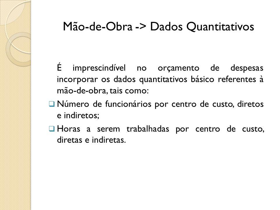 Mão-de-Obra -> Dados Quantitativos É imprescindível no orçamento de despesas incorporar os dados quantitativos básico referentes à mão-de-obra, tais c