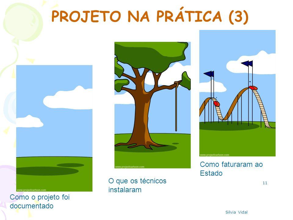 11 Como o projeto foi documentado O que os técnicos instalaram Como faturaram ao Estado PROJETO NA PRÁTICA (3) Silvia Vidal