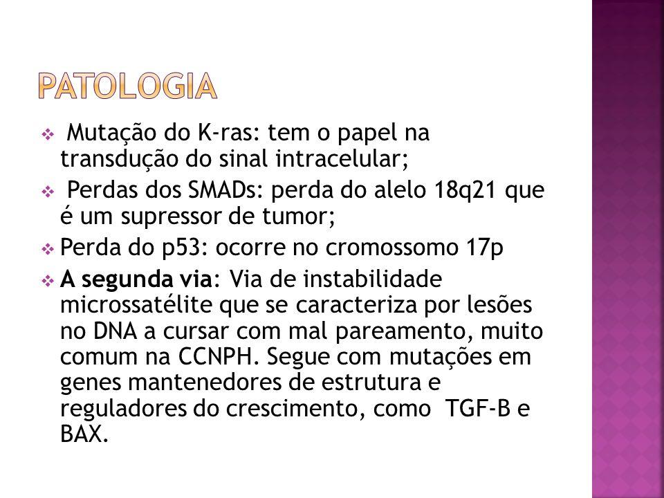 Mutação do K-ras: tem o papel na transdução do sinal intracelular; Perdas dos SMADs: perda do alelo 18q21 que é um supressor de tumor; Perda do p53: o