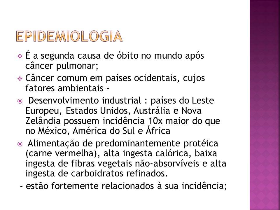 É a segunda causa de óbito no mundo após câncer pulmonar; Câncer comum em países ocidentais, cujos fatores ambientais - Desenvolvimento industrial : p