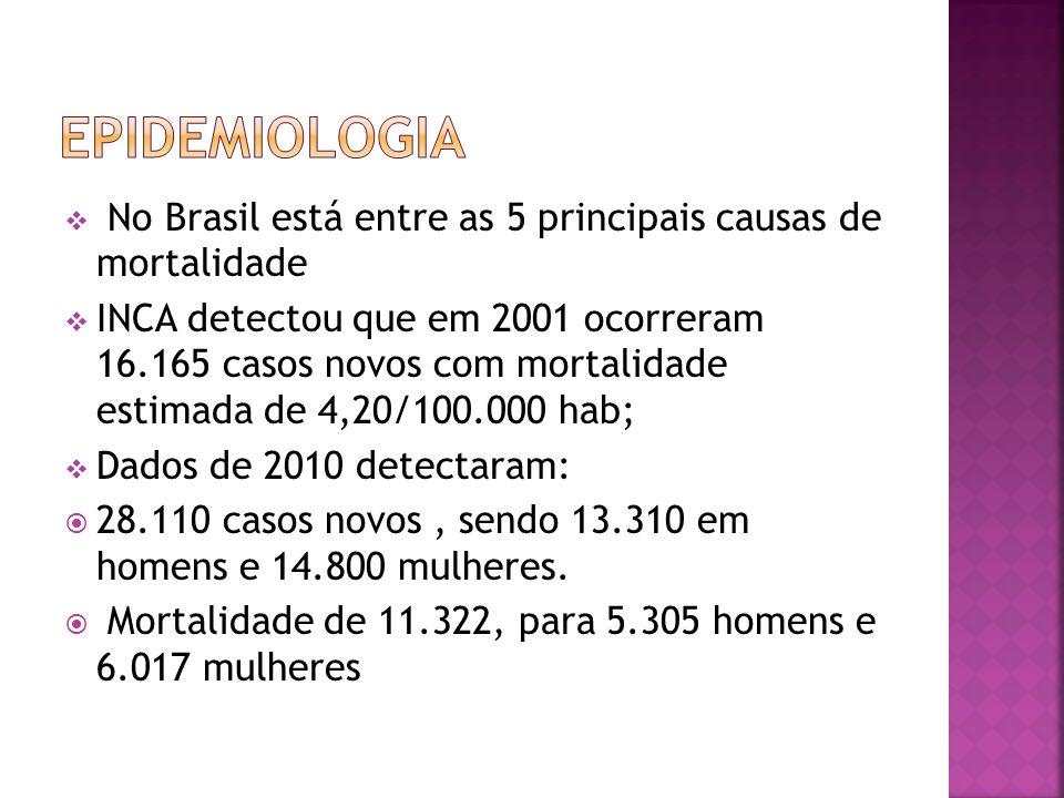 No Brasil está entre as 5 principais causas de mortalidade INCA detectou que em 2001 ocorreram 16.165 casos novos com mortalidade estimada de 4,20/100