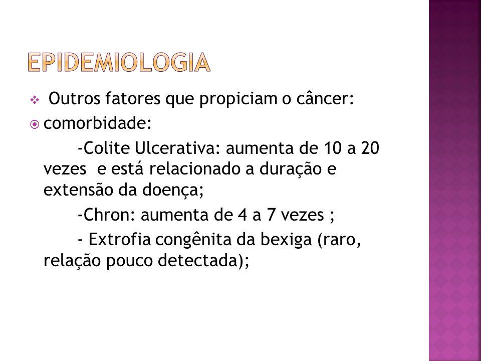 Outros fatores que propiciam o câncer: comorbidade: -Colite Ulcerativa: aumenta de 10 a 20 vezes e está relacionado a duração e extensão da doença; -C