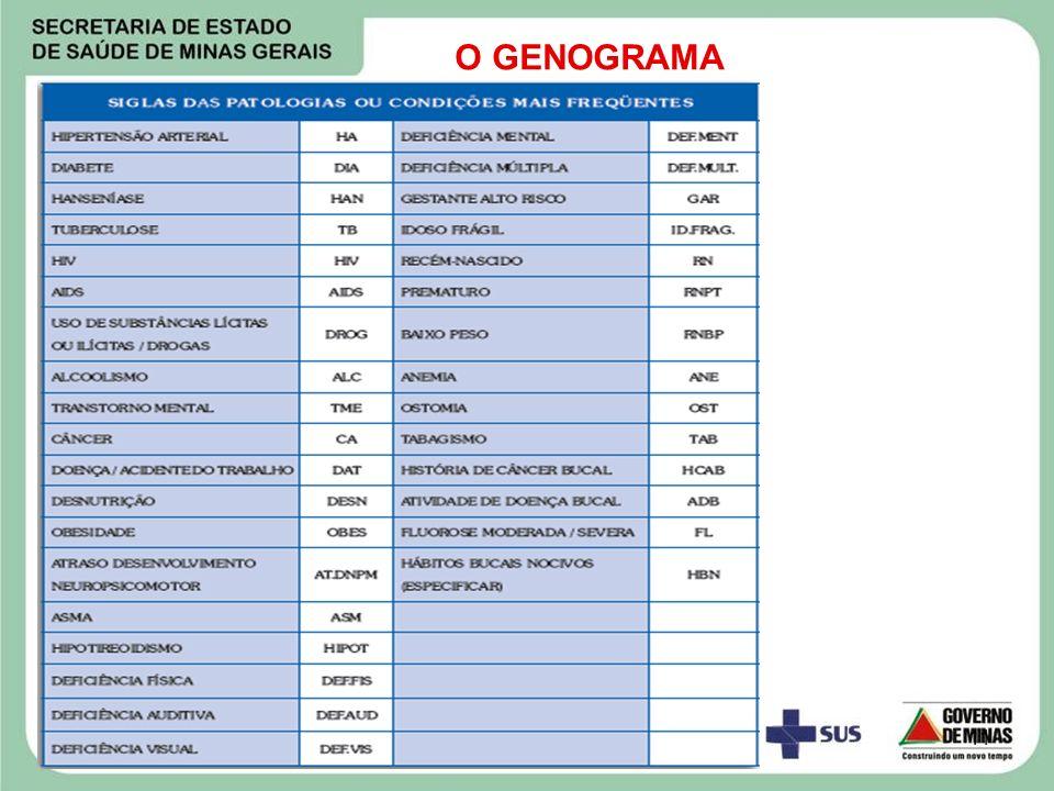 11 O GENOGRAMA
