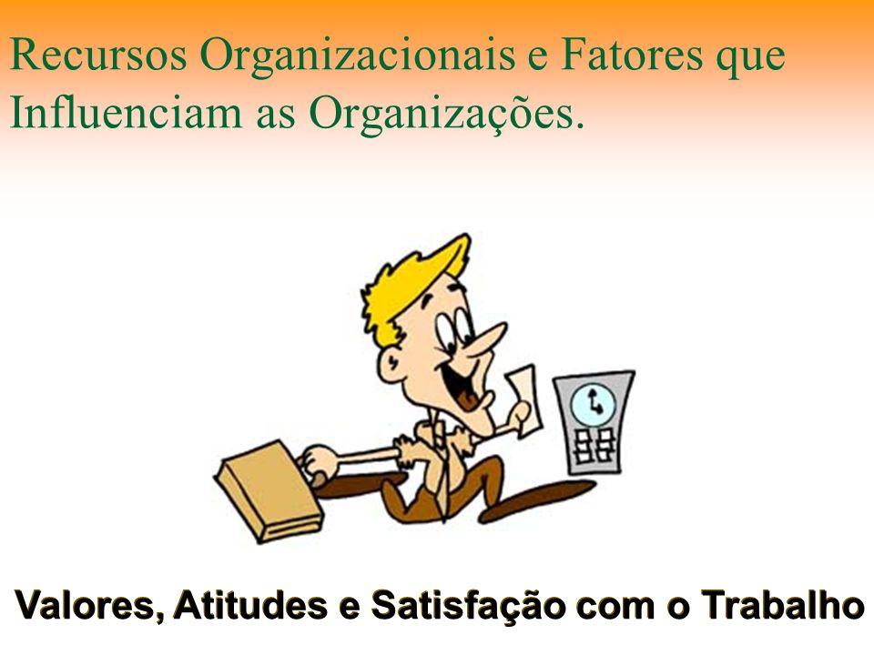 Recursos Organizacionais e Fatores que Influenciam as Organizações. Valores, Atitudes e Satisfação com o Trabalho