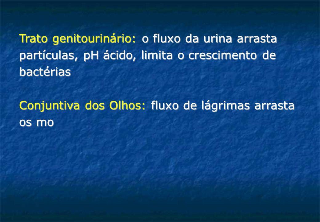 Trato genitourinário: o fluxo da urina arrasta partículas, pH ácido, limita o crescimento de bactérias Conjuntiva dos Olhos: fluxo de lágrimas arrasta os mo