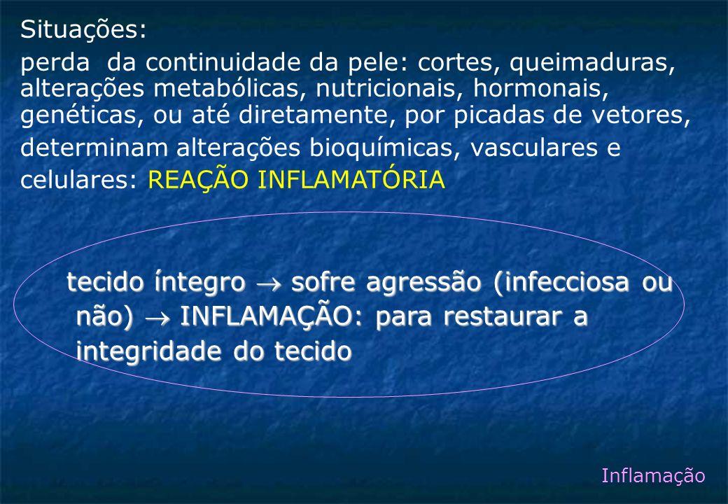 Situações: perda da continuidade da pele: cortes, queimaduras, alterações metabólicas, nutricionais, hormonais, genéticas, ou até diretamente, por picadas de vetores, determinam alterações bioquímicas, vasculares e celulares: REAÇÃO INFLAMATÓRIA tecido íntegro sofre agressão (infecciosa ou tecido íntegro sofre agressão (infecciosa ou não) INFLAMAÇÃO: para restaurar a não) INFLAMAÇÃO: para restaurar a integridade do tecido integridade do tecido Inflamação
