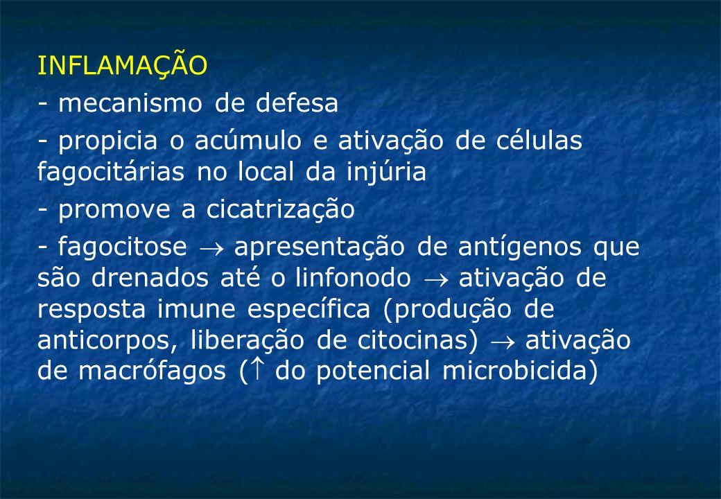 INFLAMAÇÃO - mecanismo de defesa - propicia o acúmulo e ativação de células fagocitárias no local da injúria - promove a cicatrização - fagocitose apresentação de antígenos que são drenados até o linfonodo ativação de resposta imune específica (produção de anticorpos, liberação de citocinas) ativação de macrófagos ( do potencial microbicida)