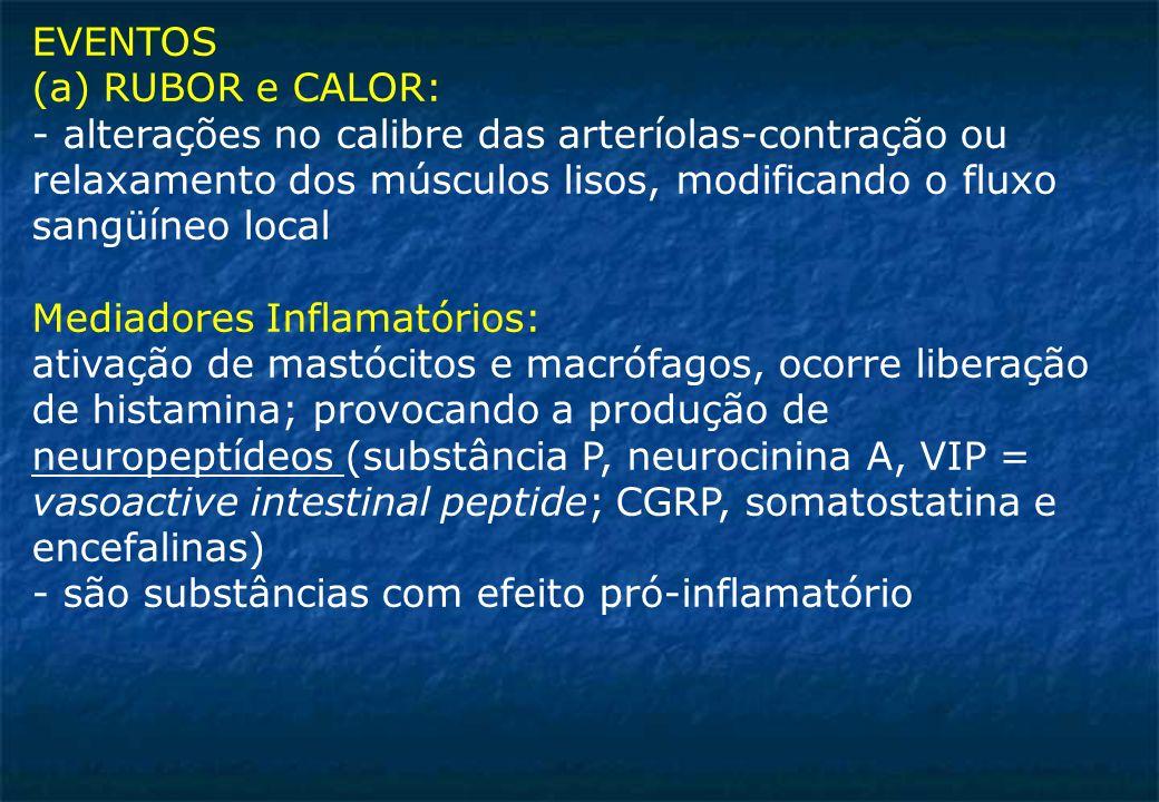 EVENTOS (a) RUBOR e CALOR: - alterações no calibre das arteríolas-contração ou relaxamento dos músculos lisos, modificando o fluxo sangüíneo local Mediadores Inflamatórios: ativação de mastócitos e macrófagos, ocorre liberação de histamina; provocando a produção de neuropeptídeos (substância P, neurocinina A, VIP = vasoactive intestinal peptide; CGRP, somatostatina e encefalinas) - são substâncias com efeito pró-inflamatório
