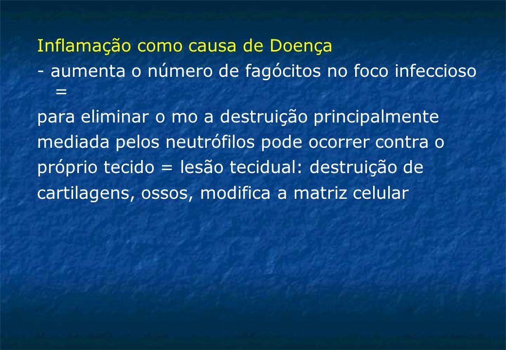 Inflamação como causa de Doença - aumenta o número de fagócitos no foco infeccioso = para eliminar o mo a destruição principalmente mediada pelos neutrófilos pode ocorrer contra o próprio tecido = lesão tecidual: destruição de cartilagens, ossos, modifica a matriz celular