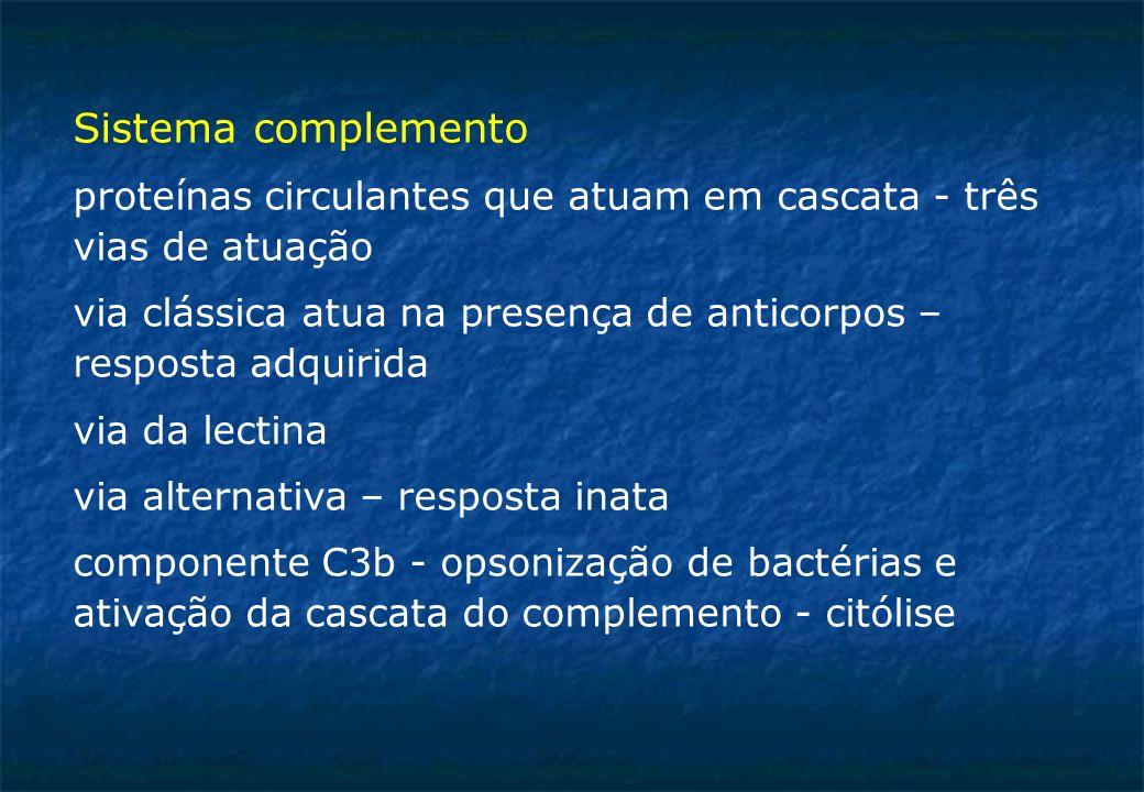 Sistema complemento proteínas circulantes que atuam em cascata - três vias de atuação via clássica atua na presença de anticorpos – resposta adquirida via da lectina via alternativa – resposta inata componente C3b - opsonização de bactérias e ativação da cascata do complemento - citólise