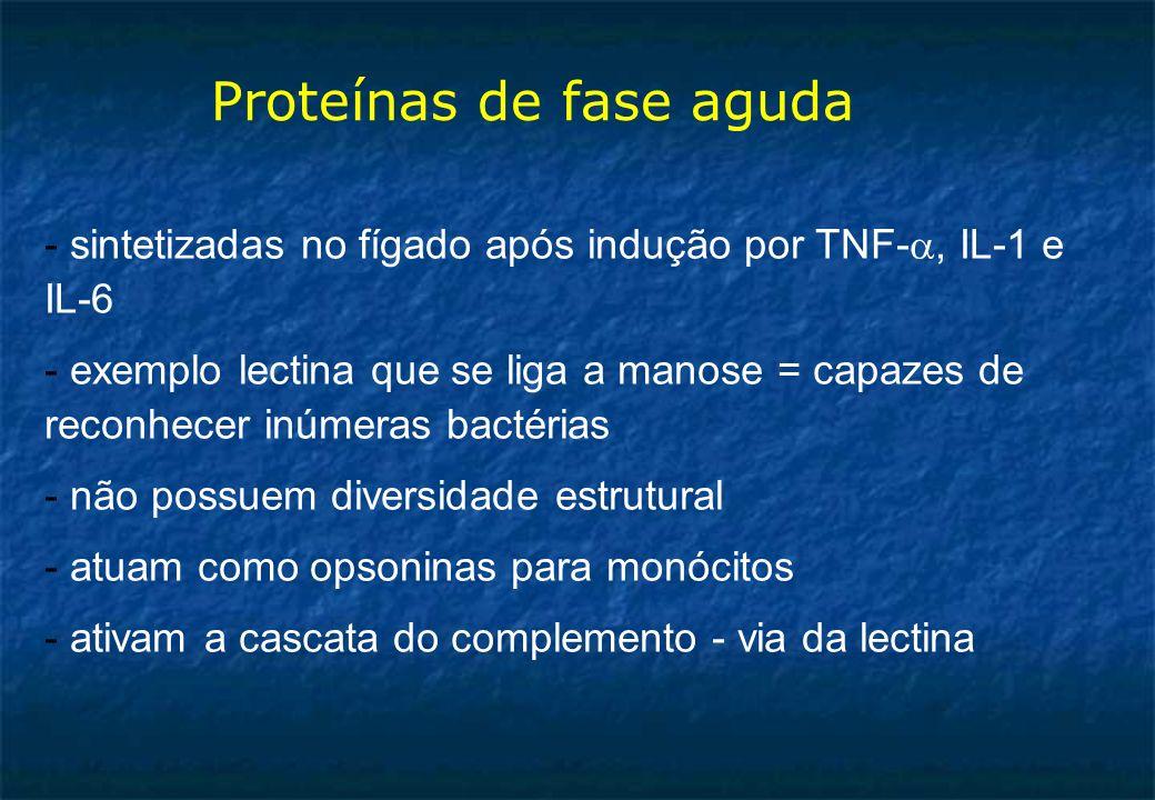 Proteínas de fase aguda - sintetizadas no fígado após indução por TNF-, IL-1 e IL-6 - exemplo lectina que se liga a manose = capazes de reconhecer inúmeras bactérias - não possuem diversidade estrutural - atuam como opsoninas para monócitos - ativam a cascata do complemento - via da lectina