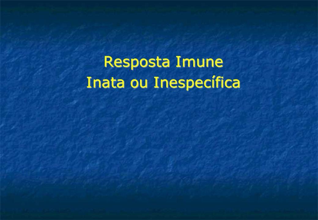 Inflamação como elo de ligação entre Imunidade natural e Adquirida A inflamação fornece sinais que são fundamentais para que os linfócitos sejam ativados iniciando, assim, a resposta imune específica.