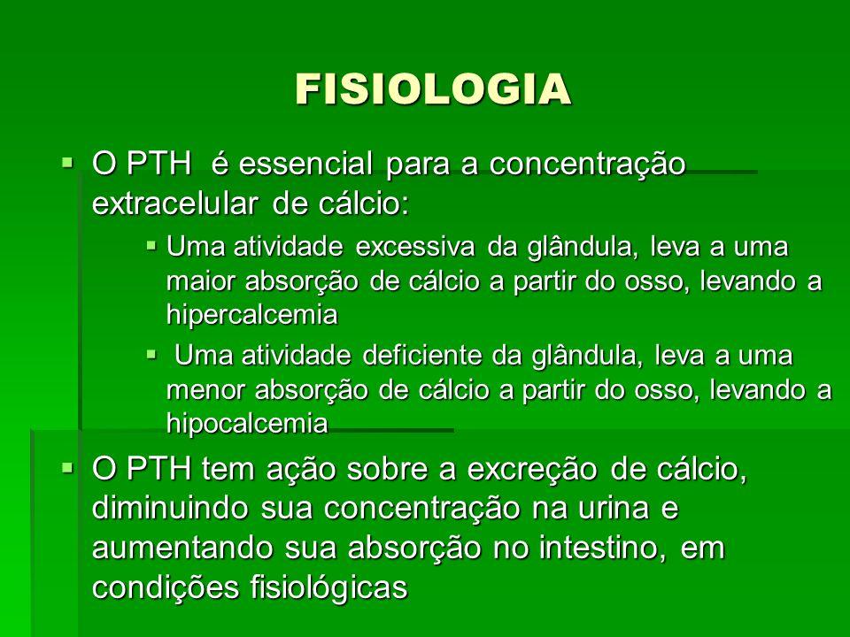 FISIOLOGIA O PTH é essencial para a concentração extracelular de cálcio: O PTH é essencial para a concentração extracelular de cálcio: Uma atividade e