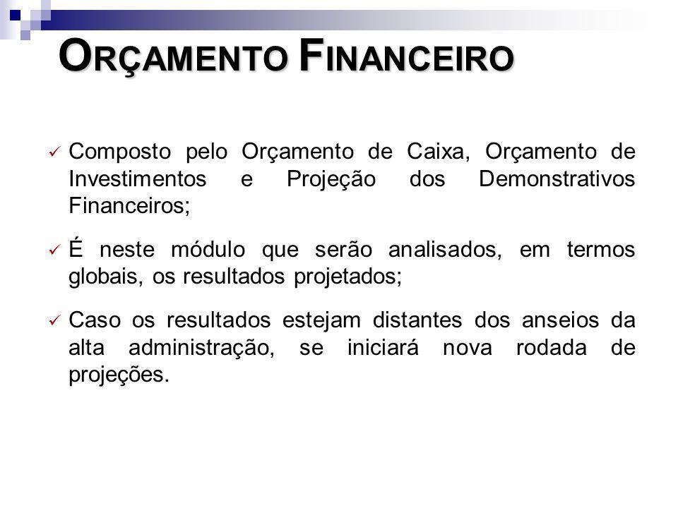 Composto pelo Orçamento de Caixa, Orçamento de Investimentos e Projeção dos Demonstrativos Financeiros; É neste módulo que serão analisados, em termos