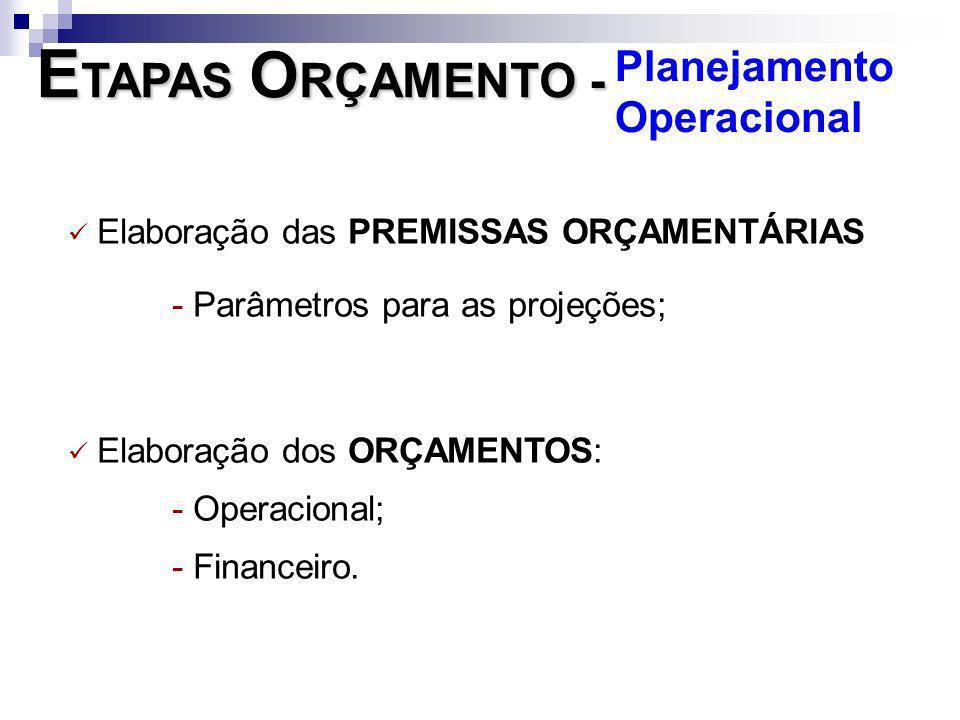 Elaboração das PREMISSAS ORÇAMENTÁRIAS - Parâmetros para as projeções; Elaboração dos ORÇAMENTOS: - Operacional; - Financeiro. E TAPAS O RÇAMENTO - Pl