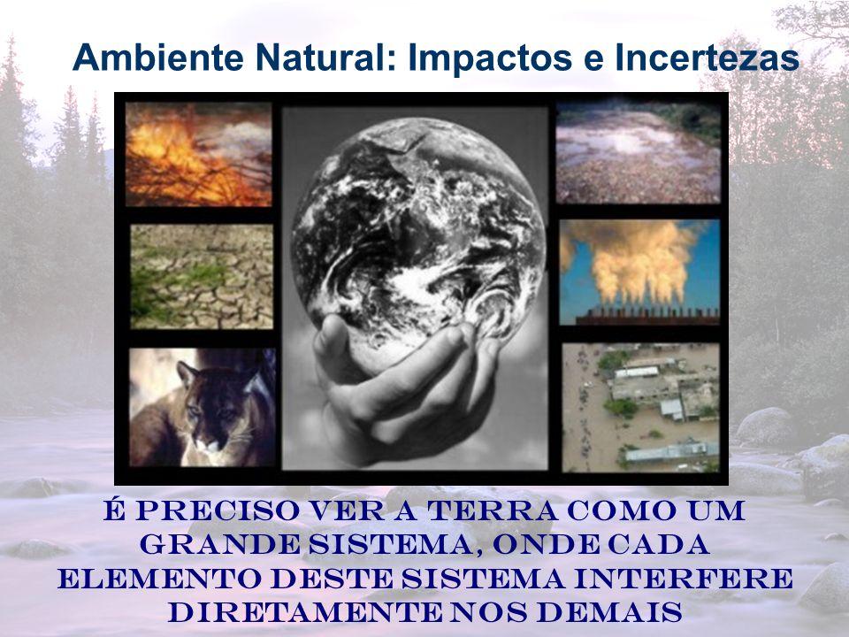 12 Ambiente Natural: Impactos e Incertezas É preciso ver a TERRA como um grande sistema, onde cada elemento deste sistema interfere diretamente nos de