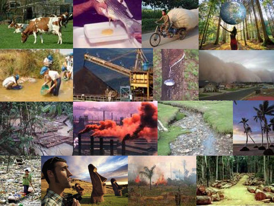 14 Os problemas ambientais provocados pelos humanos decorrem do uso do meio ambiente para obter os recursos necessários para a produção de bens e serv