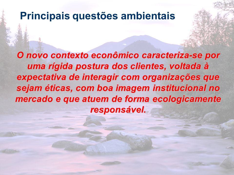 18 Principais questões ambientais O novo contexto econômico caracteriza-se por uma rígida postura dos clientes, voltada à expectativa de interagir com