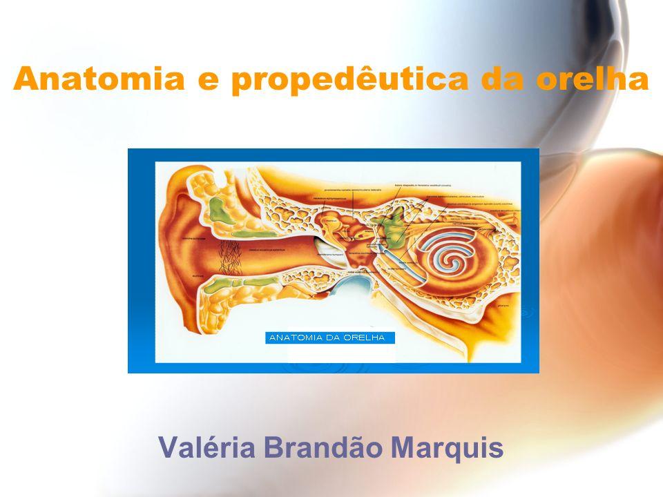 Membrana timpânica: -Dirige-se a apófise curta do martelo e forma duas pregas: 1- Prega tímpano-malear anterior 2- Prega tímpano-malear posterior -Parte flácida (Shrapnell) e tensa da MT -Entre parte flácida da MT e colo do martelo – bolsa de Prussak (abre-se no ático) Anatomia da orelha externa e média