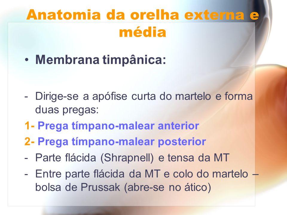 Membrana timpânica: -Dirige-se a apófise curta do martelo e forma duas pregas: 1- Prega tímpano-malear anterior 2- Prega tímpano-malear posterior -Par