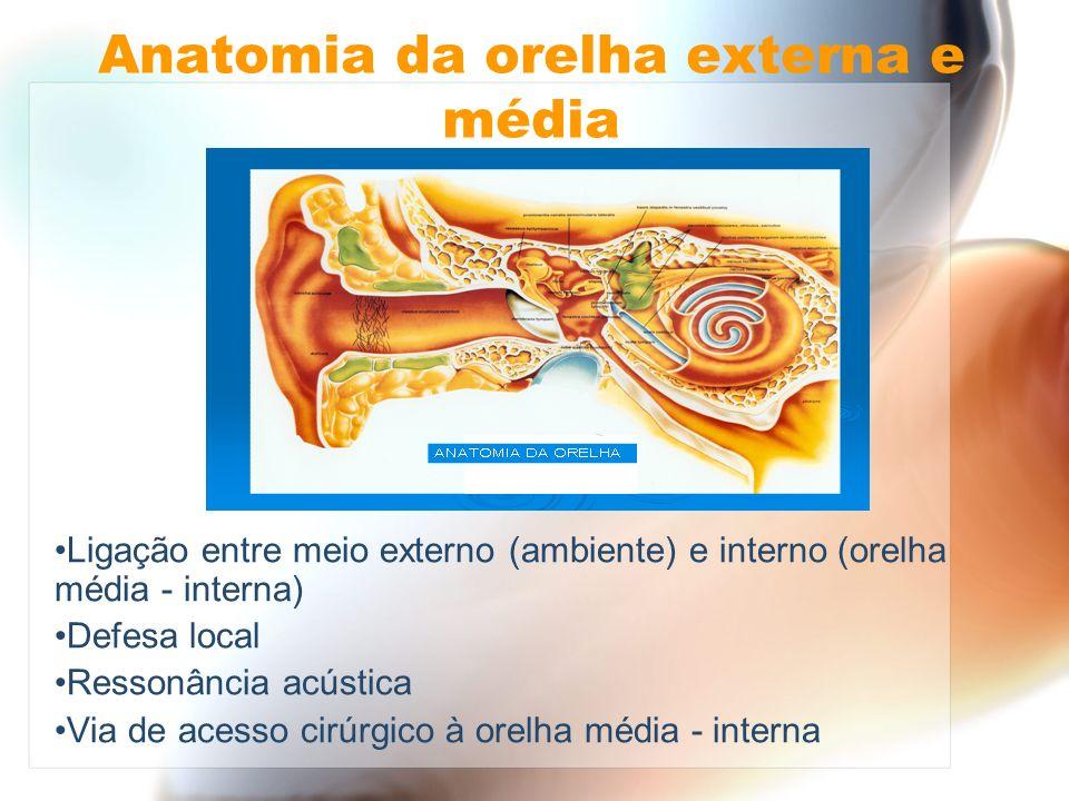 Anatomia da orelha externa e média Ligação entre meio externo (ambiente) e interno (orelha média - interna) Defesa local Ressonância acústica Via de a