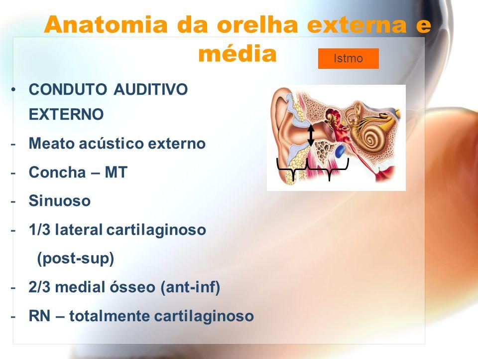 Anatomia da orelha externa e média CONDUTO AUDITIVO EXTERNO - Anterior: porção medial – ATM porção lateral - parótida - Posterior: osso e apófise mastóidea - Superior: porção petrosa do temporal fossa cerebral média
