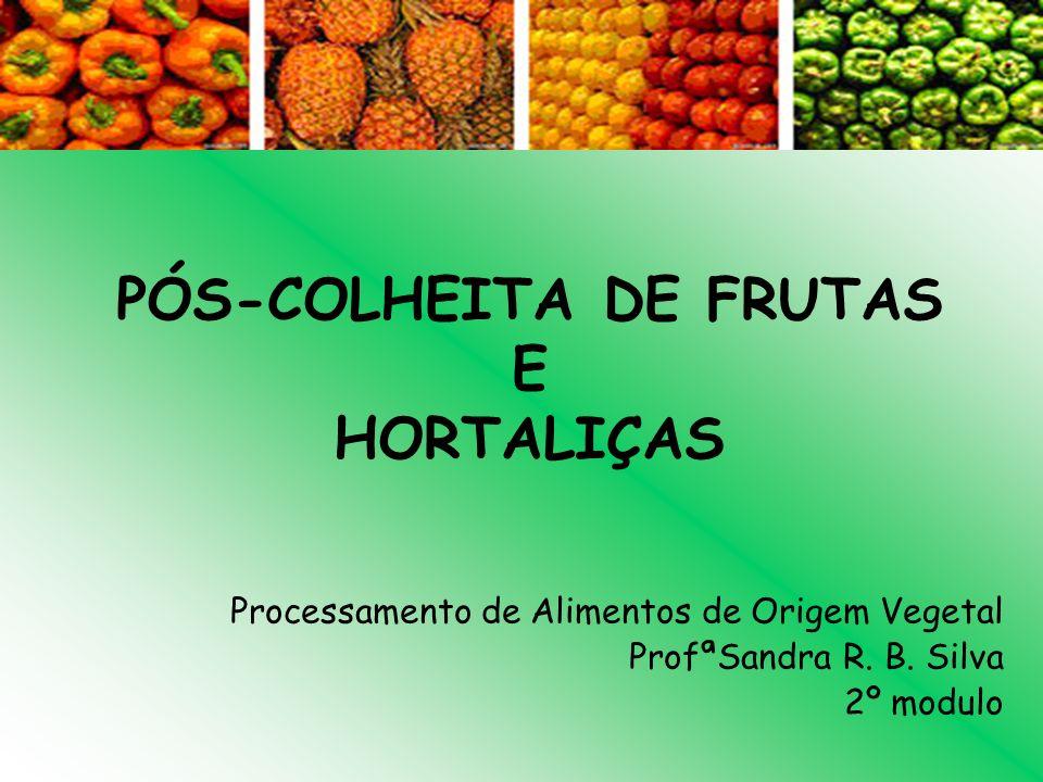 PÓS-COLHEITA DE FRUTAS E HORTALIÇAS Processamento de Alimentos de Origem Vegetal ProfªSandra R. B. Silva 2º modulo