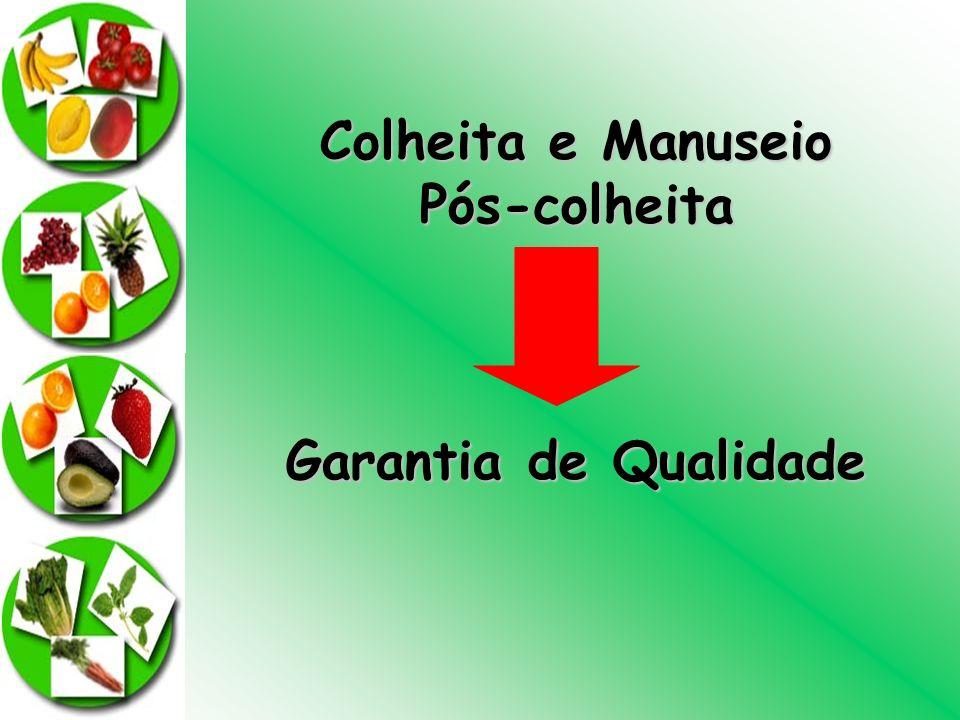 Colheita e Manuseio Pós-colheita Garantia de Qualidade