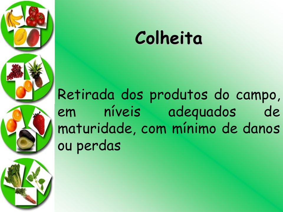Colheita Retirada dos produtos do campo, em níveis adequados de maturidade, com mínimo de danos ou perdas