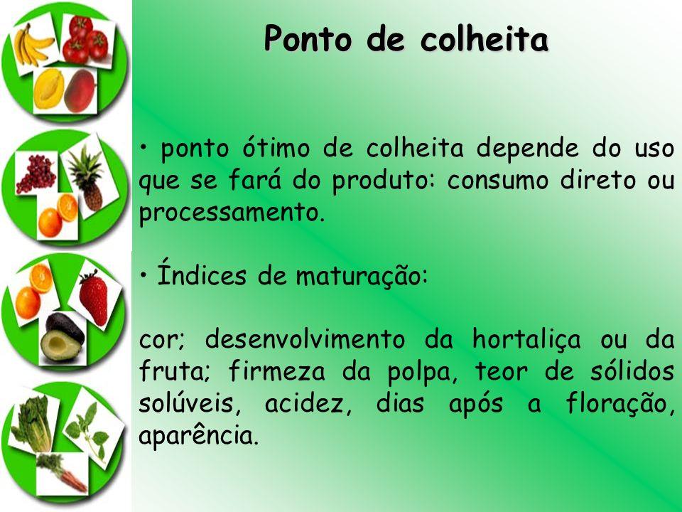 Ponto de colheita ponto ótimo de colheita depende do uso que se fará do produto: consumo direto ou processamento. Índices de maturação: cor; desenvolv