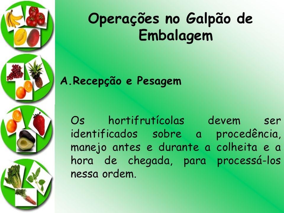 Operações no Galpão de Embalagem A.Recepção e Pesagem Os hortifrutícolas devem ser identificados sobre a procedência, manejo antes e durante a colheit