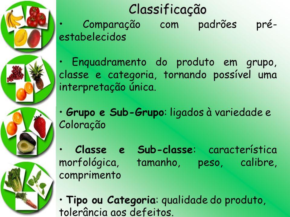 Classificação Comparação com padrões pré- estabelecidos Enquadramento do produto em grupo, classe e categoria, tornando possível uma interpretação úni