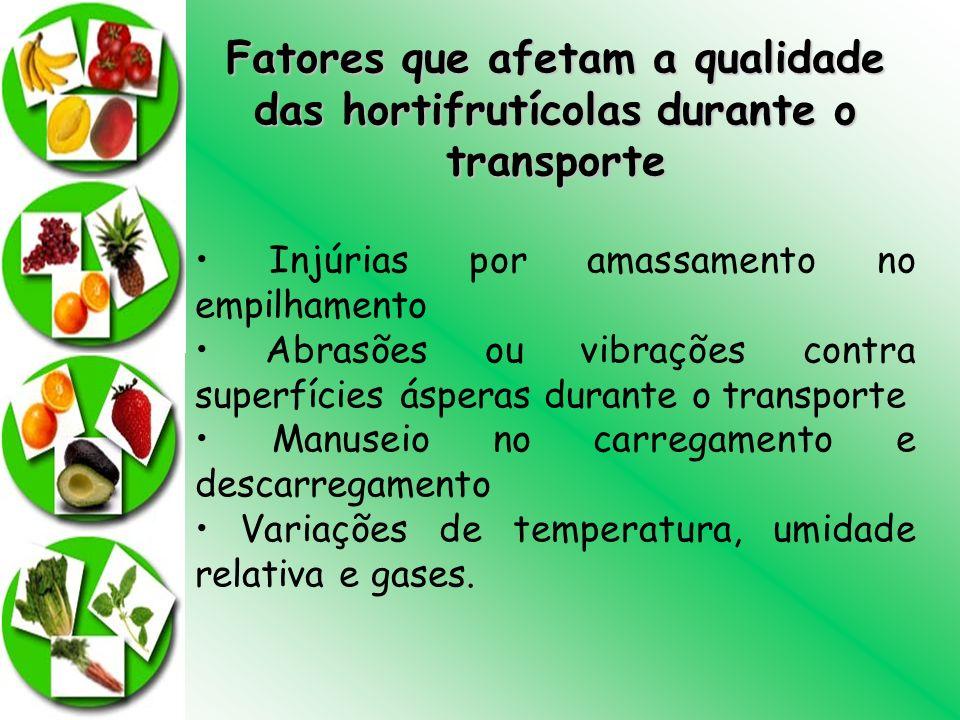 Fatores que afetam a qualidade das hortifrutícolas durante o transporte Injúrias por amassamento no empilhamento Abrasões ou vibrações contra superfíc