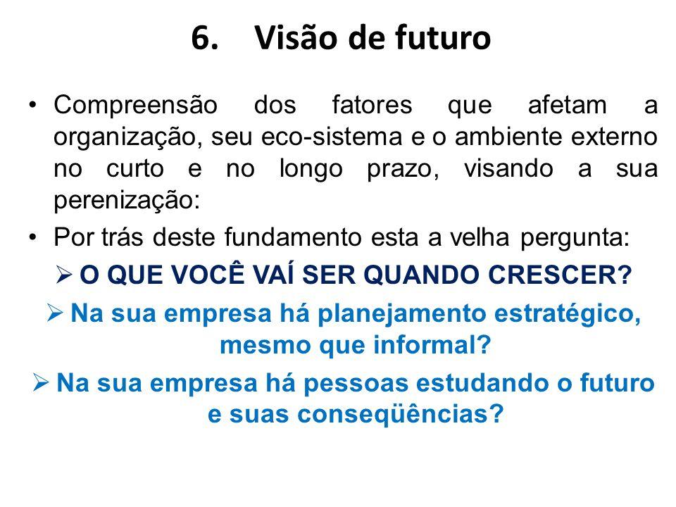 6.Visão de futuro Compreensão dos fatores que afetam a organização, seu eco-sistema e o ambiente externo no curto e no longo prazo, visando a sua pere