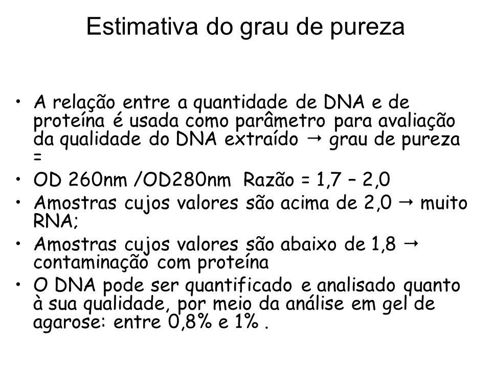 Estimativa do grau de pureza A relação entre a quantidade de DNA e de proteína é usada como parâmetro para avaliação da qualidade do DNA extraído grau
