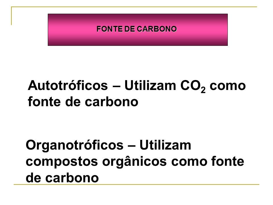 FONTE DE CARBONO Autotróficos – Utilizam CO 2 como fonte de carbono Organotróficos – Utilizam compostos orgânicos como fonte de carbono
