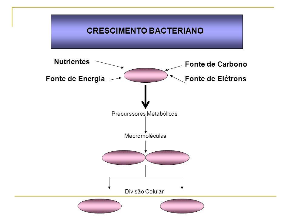 CRESCIMENTO BACTERIANO Nutrientes Fonte de Carbono Fonte de ElétronsFonte de Energia Precurssores Metabólicos Macromoléculas Divisão Celular