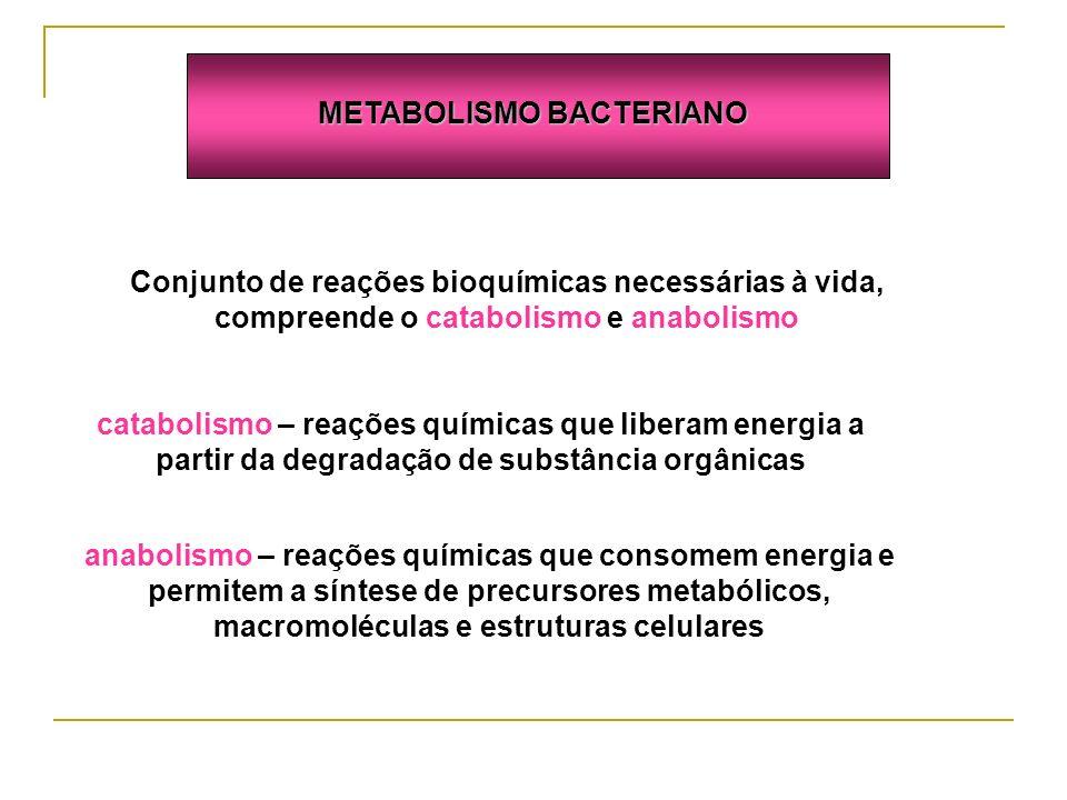 Conjunto de reações bioquímicas necessárias à vida, compreende o catabolismo e anabolismo catabolismo – reações químicas que liberam energia a partir