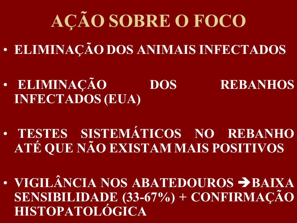 AÇÃO SOBRE O FOCO ELIMINAÇÃO DOS ANIMAIS INFECTADOS ELIMINAÇÃO DOS REBANHOS INFECTADOS (EUA) TESTES SISTEMÁTICOS NO REBANHO ATÉ QUE NÃO EXISTAM MAIS P