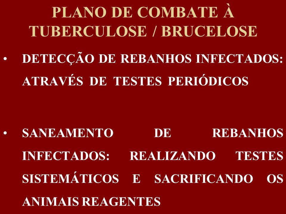 PLANO DE COMBATE À TUBERCULOSE / BRUCELOSE DETECÇÃO DE REBANHOS INFECTADOS: ATRAVÉS DE TESTES PERIÓDICOS SANEAMENTO DE REBANHOS INFECTADOS: REALIZANDO