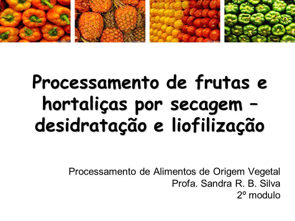 Processamento de frutas e hortaliças por secagem – desidratação e liofilização Processamento de Alimentos de Origem Vegetal Profa. Sandra R. B. Silva