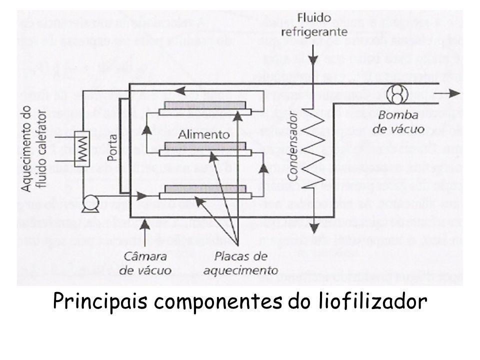 Principais componentes do liofilizador
